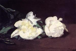 branch-of-white-peonies-and-secateurs-1864